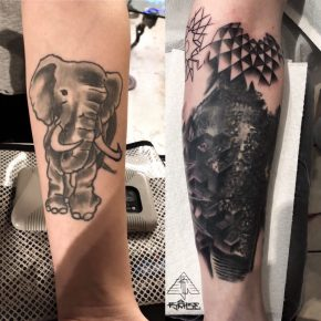 Elephant cover-up w/ geo-forms